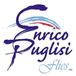 enrico_logo